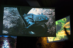 A two screen video installation as part of an Easter event at the Princess of Wales Conservatory at Kew Gardens.